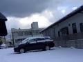 winter (444)