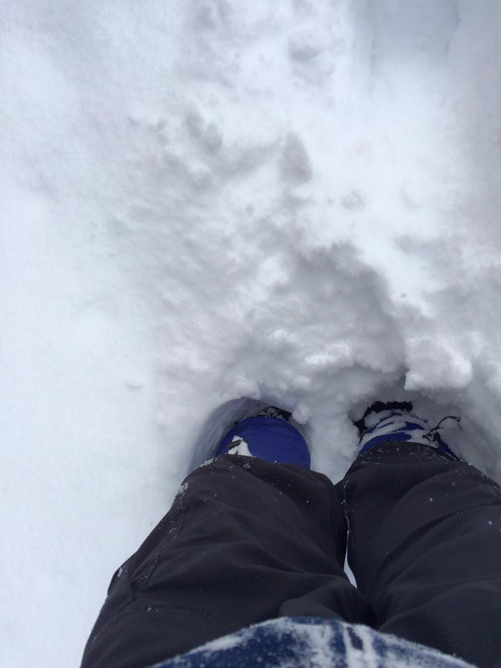 winter (186)