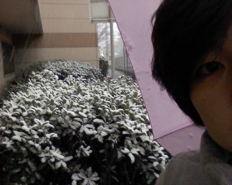 winter (416)