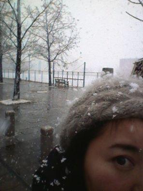 winter (491)