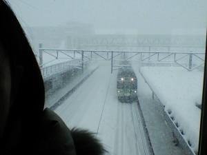 winter (176)