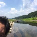 家元賞2~見切れ写真コンテスト2015夏入賞作品