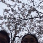 2016年4月に見切れ写真愛好家交流グループに投稿された全作品
